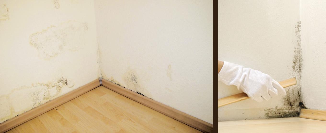 Dusche Im Keller L?ften : Badezimmer Schwarzer Schimmel: Wenn schimmel krank macht symptome und